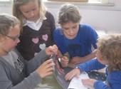Kinderen van het derde leerjaar aan het werk met  'Rare snuiters'