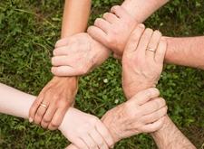 Vijf armen vormen een netwerk